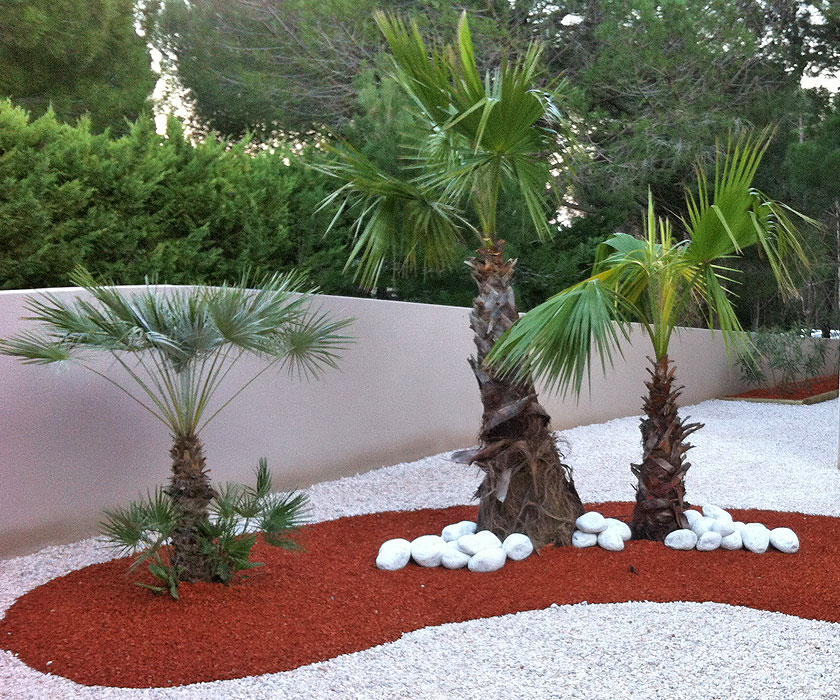 Awesome Decoration Jardin Avec Galets Pictures Design